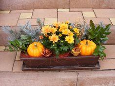 Připravený podzimní truhlík do okna Fall Crafts, Diy And Crafts, Floral Hoops, Fall Diy, Fall Decor, Holiday, Christmas, Pumpkin, Autumn