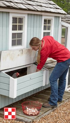Outstanding 75 Creative and Low-Budget DIY Chicken Coop Ideas for Your Backyard … – Chicken Recipes Outstanding 75 Creative and Low-Budget DIY Chicken Coop Ideas for Your Backyard … Chicken Coup, Best Chicken Coop, Backyard Chicken Coops, Chicken Coop Plans, Building A Chicken Coop, Chickens Backyard, Backyard Ideas, Cozy Backyard, Modern Backyard