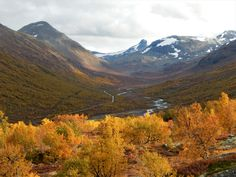 This is from Sognefjellet in Norway, a valley called Leirdalen. The trees are on fire.