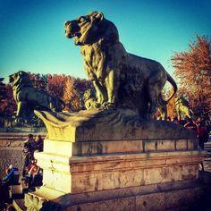 Oíd mi rugido, los leones del #Parque del #Retiro ayer por la tarde #Madrid #estanque #MadridMeMola #DeMadridAlCielo   Flickr: Intercambio d...