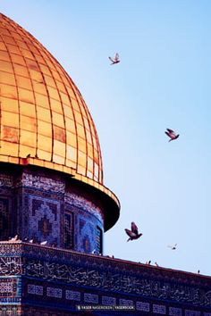 Dome of the Rock - Al-Aqsa mosque - Palestine Beautiful Mosques, Beautiful Places, Karbala Pictures, Islamic Wallpaper Hd, Lino Art, Palestine Art, Mosque Architecture, Karbala Photography, Dome Of The Rock