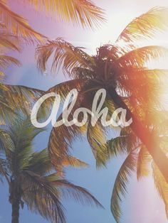 Picture of Aloha with Palm Trees Background 002 Leather Cover for iPhone 6 Aloha Hawaii, Hawaii Travel, Hawaii Trips, Island Girl, Big Island, Wallpaper Please, Iphone Wallpaper, Oahu, Hawaii Quotes