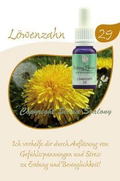 29 Löwenzahn 10 ml Ale, Stress, Soap, Bottle, Flowers, Alternative Medicine, Ale Beer, Flask, Florals