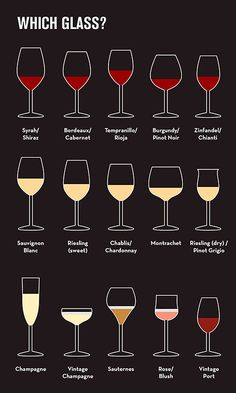 beginner's guide to wine Glasses #wine #winetasting #wineeducation