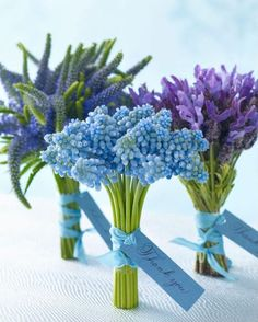 Nosegays - for guests or special family and friends- perfect size wise, (2 are fragrent- the hyacinth and the lavender)