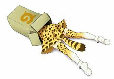 serval in the box