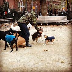 http://washingtonsquareparkerz.com/annie_brenner-coldam-washingtonsquarpark-nyc/   @annie_brenner #coldAM #washingtonsquarpark #nyc
