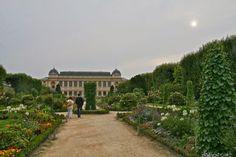 Day 10: Jardin des plantes in Paris (Balades urbaines de Nathalie à Toronto... et ailleurs: Paris, Jour 10: Du Jardin des Plantes au Parc Bercy)