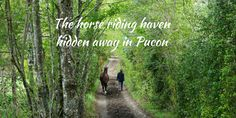The horse riding haven hidden away in Pucon - Traveling Honeybird