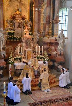 The unstoppable Summorum Pontificum
