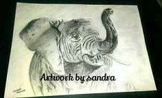 A4 sketch £35 + postage Art Paintings For Sale, A4, Moose Art, Sketch, My Favorite Things, Artwork, Animals, Work Of Art, Animaux