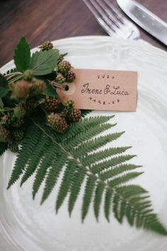 Fern place card ⎪Paola Colleoni⎪see more on: http://burnettsboards.com/2015/07/organic-forest-fern-tablescape/