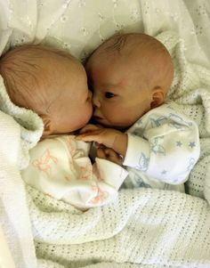 Reborn Baby Prem Preemie Twins Lifelike Boy Girl Realistic Doll Carly's Cradle