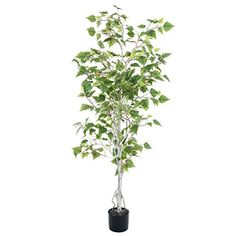 nice  Light and Mobile Design, Over 1000 Leaves, Indoor/Outdoor Natural Trunk, PVC Leaves, Variegated 6 inch Pot Dimensions: 60 inches x 28 inches x 28 inches  #PureGarden  https://www.silkyflowerstore.com/product/pure-garden-birch-artificial-tree-5/  #PureGarden