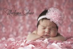 Melissa Calise Photography (Newborn Photo Shoot Posing Ideas Baby Girl Pink Flowers)
