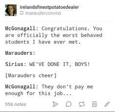 Marauders Harry Potter James Potter Sirius Black Remus Lupin