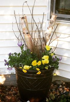 Urn Decorations For Spring Spring Urn At Toronto Beaches Housedesigntracy Harper