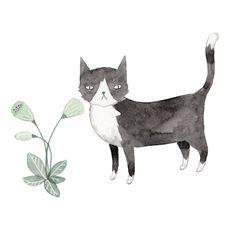 {Julianna Swaney . Tumblr} l #illustration