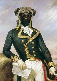 Cane con giacca da ammiraglio inglese