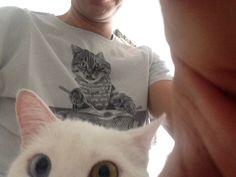 el gatito de david bowie David Bowie, Meet, Cats, Animals, Kitten, Gatos, Kitty Cats, Animaux, Animal