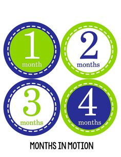 Baby Boy Monthly Milestone Stickers Style #080