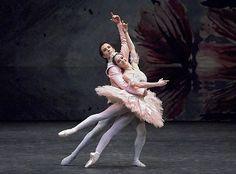 Robert Curran and Lucinda Dunn in The Nutcracker. Photo (c) Jim McFarlane. Ballet Books, Australian Ballet, Sugar Plum Fairy, Dance Tights, Ballet Photos, Ballet Photography, Ballet Costumes, Dance Pictures, Ballet Dance