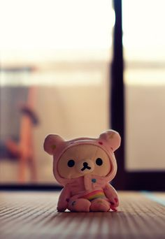 Being a Plush Toy Means Never Having to Brace for Impact - pre-shoot #rilakkuma