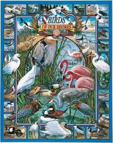Birds of Our Shores
