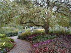 Prescott Park, tree in Formal Garden. We have a copy of a painted version of almost exactly this view, by Michael Warhurst (who may have taken this photo; I'm not sure).