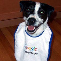 """Έκανα Έρευνα = εφετζίδικος τρόπος για να πεις """"το googlαρα"""""""