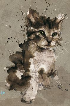 Florian Nicolle is a graphic designer and illustrator freelancer based in France. Florian has a degree in Graphic Design and have passion on illustration. Art And Illustration, Portrait Illustration, Cat Illustrations, Illustration Fashion, Fashion Illustrations, Portraits Illustrés, Watercolor Cat, Watercolor Paintings, Watercolors