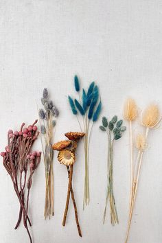 Naturelle DIY Dried Flower Bouquet – Actually WTF Accessorizing Your Leather-based: Nice concepts to Dried Flower Bouquet, Flower Bouquet Wedding, Dried Flowers, Flower Bouquets, Fresh Flowers, Deco Floral, Floral Design, Small Flowers, Beautiful Flowers