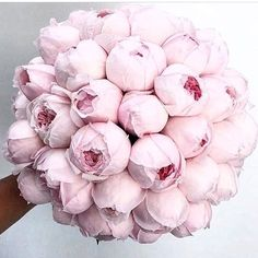 S A T U R D A Y ' S  B E  L I K E...   @flordepassion via @partywithlenzo  #byzantinedesign #256highstprahran #peonies #flowers #bunch #pink #marble #tumbledmarble  #pinkmarble #pinktiles #marblefans #encaustics #interiors #interiordesign #interiorstyling #interdesignmelbourne #architecture #architecturemelbourne #trendingnow #trending #tile #tiles #tiletrends #flatlay #trulybreathtakingtiles #themostbeautifultilestoreinmelbourne #yeahwerealittleobsessedwithtiles