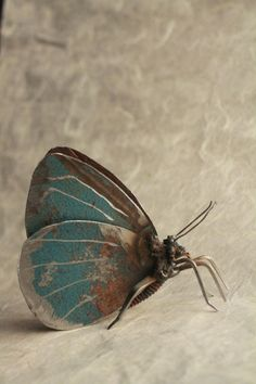 """3"""" Holly Blue Butterfly Recycled Welded Scrap Metal Sculpture Unique Art Work Reclaimed by GreenHandSculpture (45.00 GBP)"""