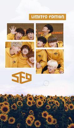 Aesthetic Pastel Wallpaper, Aesthetic Wallpapers, Neoz School, Sf9 Taeyang, Chani Sf9, Free Phone Wallpaper, Fnc Entertainment, First Dance, Kpop Groups