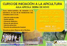 Curso de iniciación a la apicultura