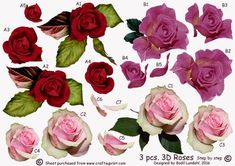 3 pcs 3D Roses Step by step on Craftsuprint designed by Bodil Lundahl - This sheet is for the creative crafter, who wants to decide for herself which backing, embellishments and sentiments to use her cards. Here are 3 pieces very detailed 3D vintage flowers to use either as main image on smaller cards (fx A6) or as decorations on larger cards. - Now available for download!