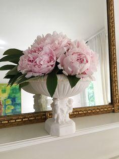 pink peonies in a Greek urn