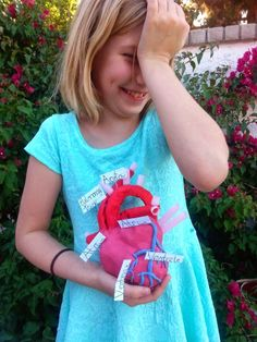 Make an anatomical model of the human heart! All you need is some aluminum foil, modeling clay, crepe paper, and pipe cleaners! Also, instructions for making a heart pump and representing blood flow!
