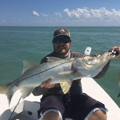 Blue Line Fishing Charters, LLC is an inshore and offshore fishing charter business. Contact our Cape Coral Fishing Charters office at Pine Island, Offshore Fishing, Fishing Charters, Cape Coral, Blue Line, Trout, Brown Trout, Salmon