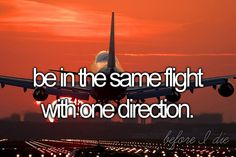 Be in the same flight with One Direction