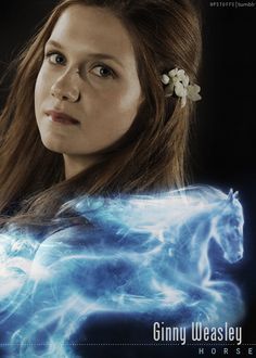It's funny I took a test to see what my patrounus is and it is a Horse and I have red hair....I am Ginny!!!! jk