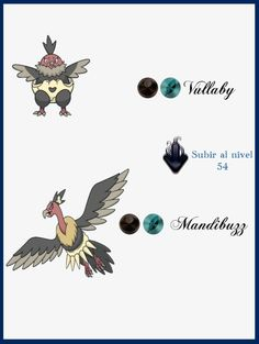 79 Best Vullaby Images Best Pokemon Ever Cool Pokemon Binoculars