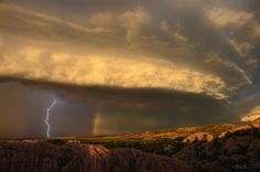 Power and Beauty by Rich Lewis on 500px