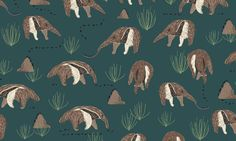 Dear Stella House Designer - Wild and Free Flannel - Anteaters Flannel in Midnight Fabric Patterns, Print Patterns, Sewing Patterns, Safari Animals, Wild And Free, Digi Stamps, Fabric Design, Flannel