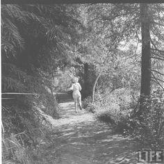 Edward Clark for LIFE Magazine, August 1950.