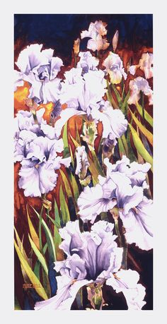 Summertime Irises Painting by Mike Hill - Summertime Irises Fine Art Prints and Posters for Sale