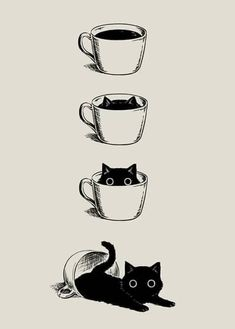 I love cats and coffee I love cats and coffee Katzen Stube. - I love cats and coffee I love cats and coffee Katzen Stube… I love cats and coffee I love cats and coffee Katzen Stubentiger Kunst Anime Kunst, Art Anime, I Love Cats, Cute Cats, Funny Cats, Crazy Cat Lady, Crazy Cats, Art Mignon, Cats And Kittens