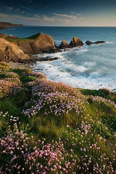 Home / Twitter Beautiful World, Beautiful Places, Beautiful Pictures, Places To Travel, Places To Go, Landscape Photography, Nature Photography, Devon Coast, Nature Aesthetic
