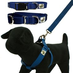 Bamboo Leashes and Collars Sawyer's Pet Bakery & Boutique - Collars & Leashes